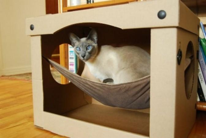 Как сделать дом для кота кошки и котята