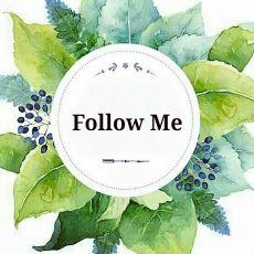 Майстер Follow